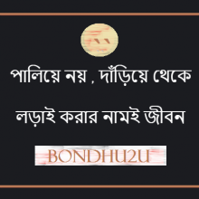 Life Bangla Sms Picture
