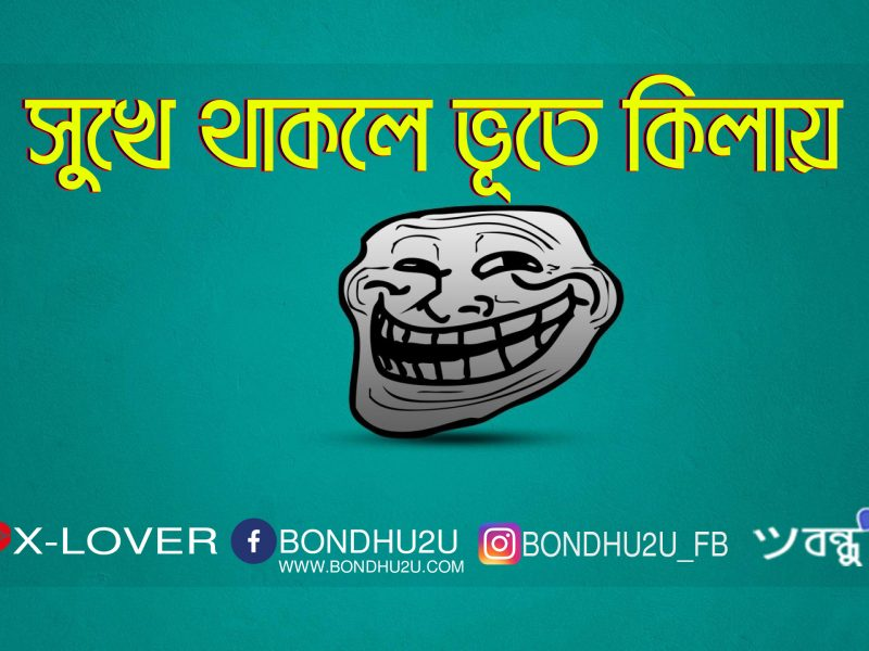 Shukhe Thakle Vute Kilay   Bangla Troll