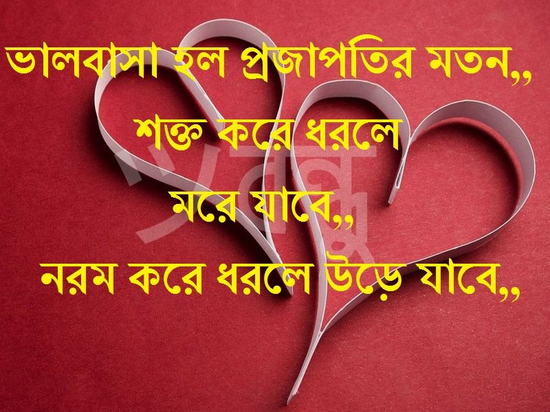 Bangla Valobashar Sms Romantic Bangla Sms